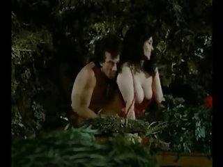 Adena的色情性别的视频dvd,粉红色的(墨西哥博客abby业余的图片