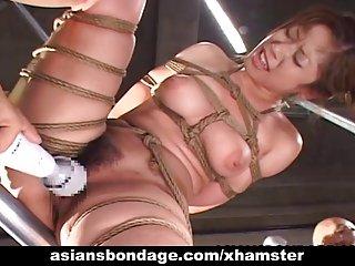 绝对免费的色情影片美味的亚洲gal